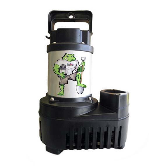 Big Frog Eco Drive Pumps