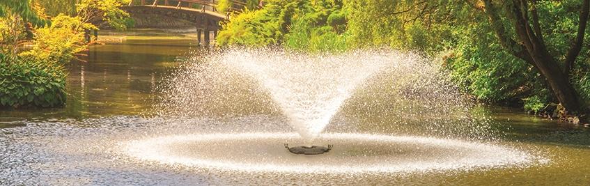 Fountain Banner 1