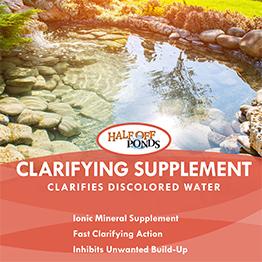 Clarifying Supplement