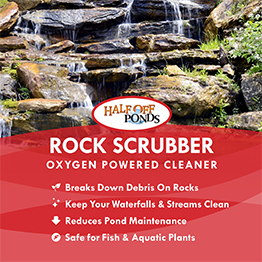 Rock Scrubber
