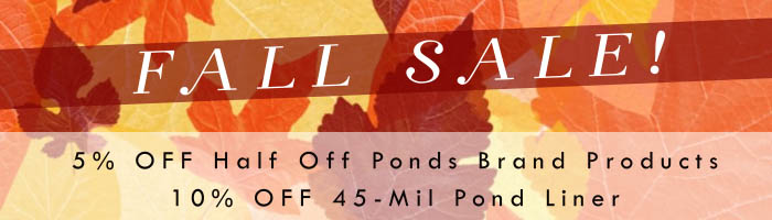 Fall Liner Sale