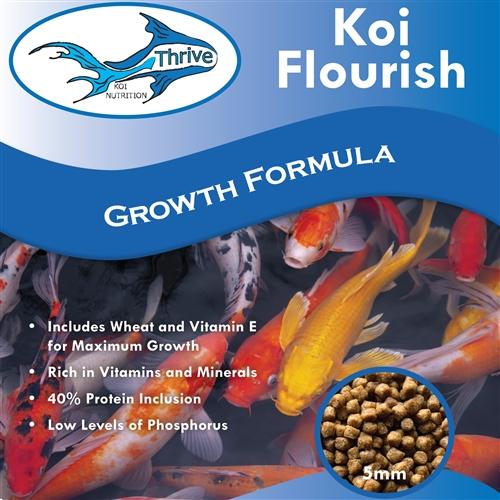 Growth Formula